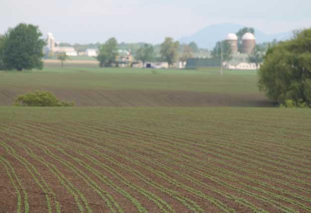 Dans l'est de la Montérégie, au pied du mont Saint-Hilaire, les producteurs agricoles ont profité d'un temps idéal pour les semences. © Pierre-Yvon Bégin