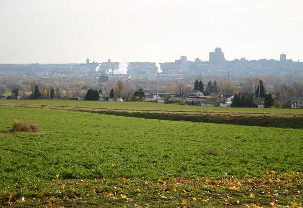Plusieurs municipalités au Québec souhaitent que la CPTAQ soit scrutée par la Commission de révision permanente des programmes. © Archives TCN