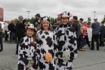 Trois jeunes manifestantes avaient enfilé leurs costumes de vache pour signifier leur appui à la gestion de l'offre. Crédit : Étienne Dupuis