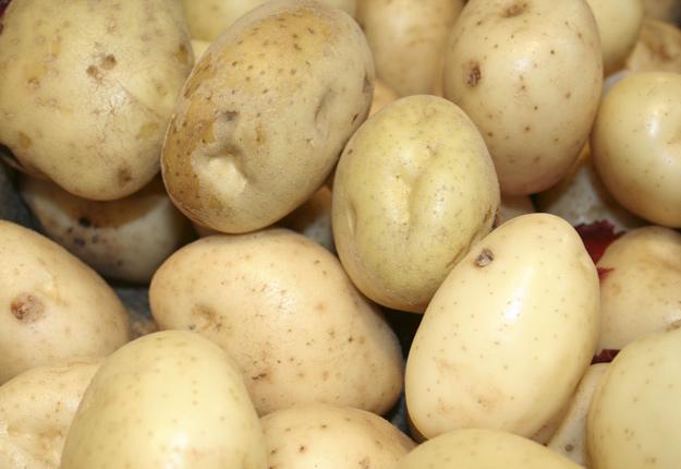 Depuis l'automne dernier, plusieurs objets métalliques ont été découverts dans des pommes de terre de l'Île-du-Prince-Édouard. © Archives/TCN