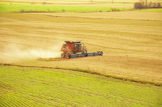 L'IREC constate qu'une majorité de juridictions dans le monde limitent l'évaluation des terres à leur valeur agronomique ou imposent un taux de taxation plus bas. Crédit photo : Archives/TCN