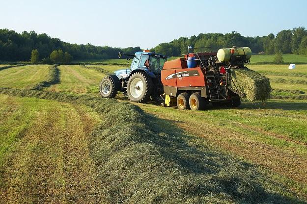 La nouvelle assurance récolte pour le foin tiendra compte de trois causes de pertes : le gel, la sécheresse et l'excès de pluie. Crédit photo : Archives/TCN