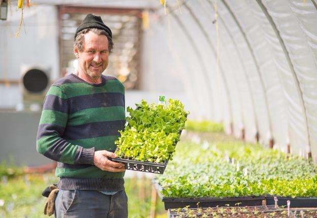 Le fermier de famille François Tanguay se dit énergisé, comme chaque année, par les premiers rayons de soleil printaniers. Il a amorcé les semis dans ses serres et transplantera les plants en pleine terre dans quelques semaines. Crédit photo : Martin Ménard/TCN