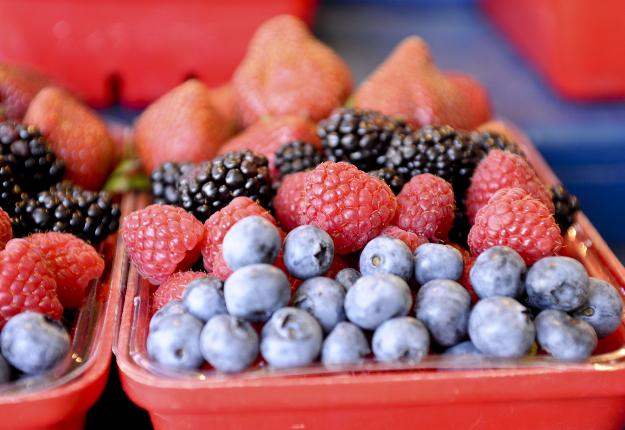 Les grands volumes de petits fruits bleus feront leur entrée dans les magasins d'alimentation de la province cette semaine. Crédit photo : Archives/TCN
