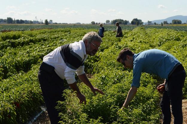 Le producteur Michel Lachaume fait découvrir ses 350 variétés de fines herbes, fruits et légumes au chef exécutif du Café Ricardo, Sébastien Beaudoin. Crédit photo : Myriam Laplante El Haïli/TCN