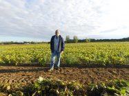 Sylvain Raynault a commencé sa récolte de haricots bio vendredi dernier. Sa production sera exportée en Europe. Crédit photo : Sylvain Raynault