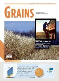 Grains - Octobre 2016