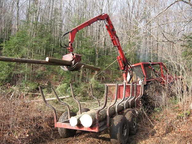 Au Québec, environ le quart des approvisionnements en bois résineux des usines québécoises proviennent de la forêt privée. Crédit photo : Archives/TCN