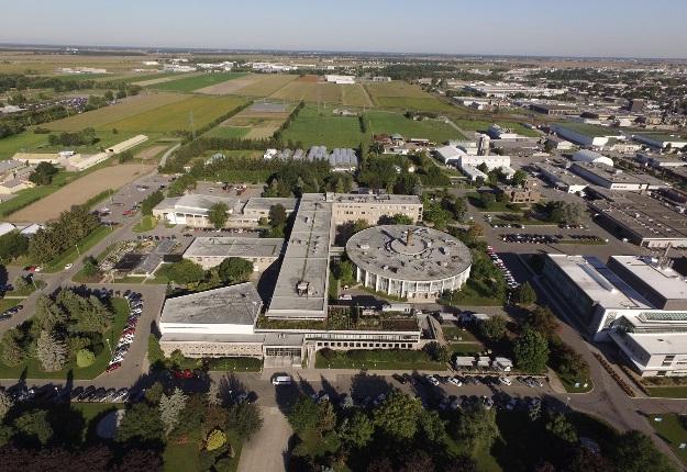 Deux bouvillons ont été identifiés comme porteurs de la bactérie Salmonella Dublin à l'Institut de technologie agroalimentaire (ITA), campus de Saint-Hyacinthe. Crédit photo : Gracieuseté de l'ITA Saint-Hyacinthe