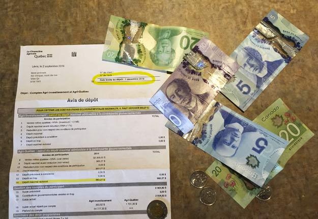 Des agriculteurs ont laissé près de 10,4 M$ sur la table de 2011 à 2014 en ne réclamant pas l'argent alloué pour eux par des programmes gouvernementaux. Crédit Photo : Martin Ménard/TCN