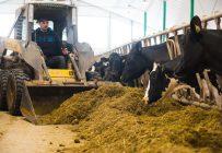 Les producteurs laitiers contactés mentionnent que dans un contexte de baisse du prix du lait, qu'elles soient petites ou grandes, peuvent empocher des profits à condition d'augmenter l'efficacité de leur production et de surveiller leurs coûts de production. Crédit photo: Martin Ménard/TCN