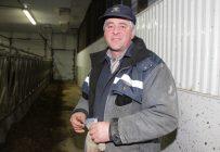 Renaud Lachance observe que « la queue des vaches ne traîne plus dans le daleau » depuis qu'il a adopté la pratique de la queue écourtée. En 2008, souligne-t-il, personne n'avait remarqué que ses vaches n'avaient plus de queue lors de la journée Portes ouvertes de l'UPA dans sa ferme. Crédit photo : Pierre-Yvon Bégin/TCN