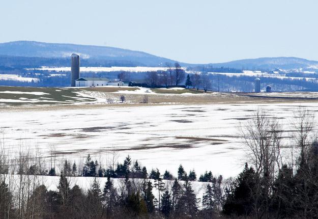 Certaines dispositions du projet de loi 122 destiné à doter les municipalités d'une plus grande autonomie soulèvent des inquiétudes pour la protection du territoire agricole. Crédit photo : Archives/TCN