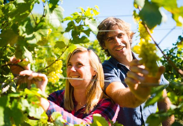 Véronique Hupin et Michael Marler, copropriétaires du vignoble Les Pervenches, produisent avec succès du vin issu de la viticulture biodynamique depuis une dizaine d'années. Crédit photo : Martin Ménard/TCN