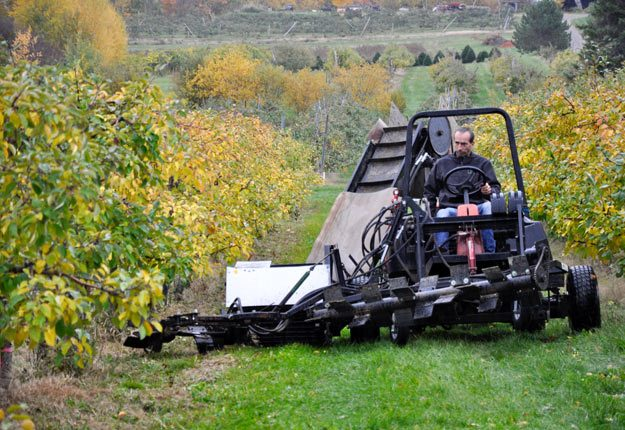 La ramasseuse de pommes, créée par Martin Ferland, lui permet d'économiser sur les coûts de main-d'œuvre et d'améliorer la qualité de sa récolte. Crédit photos : André Laroche