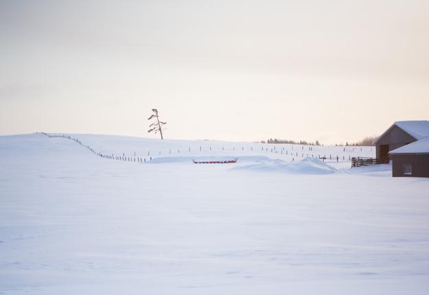 Le climat nordique ne facilite pas la pratique de l'agriculture dans les vastes étendues de l'Abitibi-Témiscamingue. Crédit photo : Archives/TCN