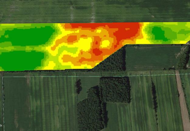Image NDVI d'un champ de maïs semé à taux variable. Données captées le 30 juin 2016. Crédit photo : Agrocentre - Outils R7 par WinField, Google Earth Pro