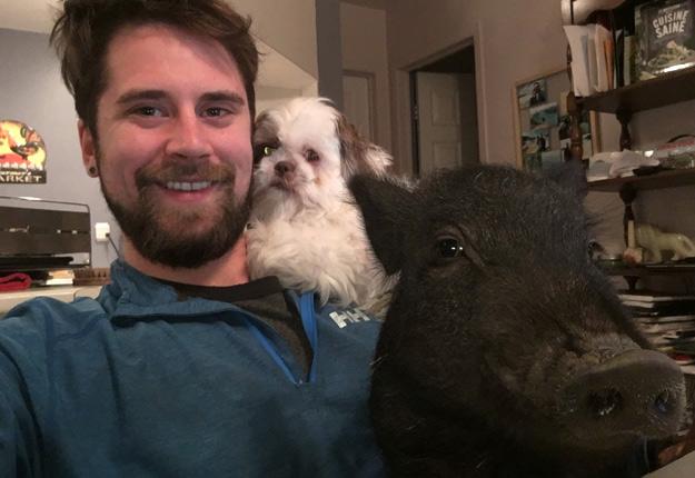 Un agent de la faune a abattu le cochon de Philippe Beauregard. Crédit Photo : Gracieuseté de Philippe Beauregard