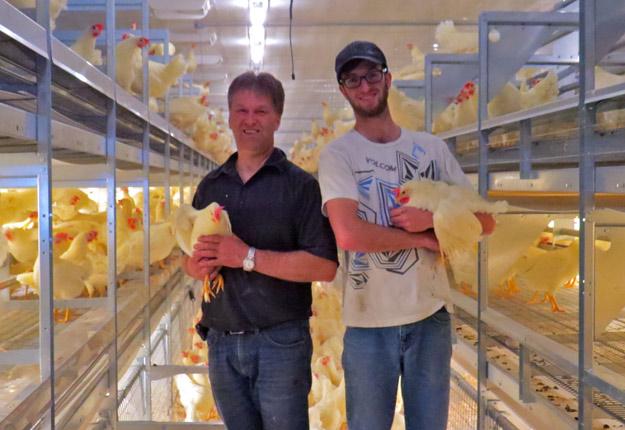 Paulin Bouchard et son fils Charles-Éric ont entrepris le virage de l'élevage en volière pour répondre aux besoins d'un client important. Crédit photo : Ferme Gédésoeufs