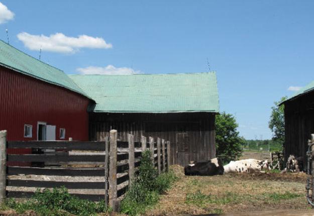La propriété compte quatre granges, de même que de l'équipement de ferme. Crédit photo : Kijiji