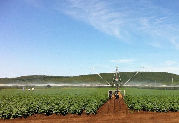 Un producteur qui irrigue ses champs peut avoir à faire des prélèvements d'eau de diverses sources provenant des Grands Lacs ou du Saint-Laurent. Crédit photo: Archives TCN