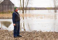 Le gouvernement du Québec vient d'annoncer la mise en place d'un guichet unique visant à simplifier les procédures d'indemnisation pour les fermes touchées par les inondations. Crédit Photo : Martin Ménard/TCN