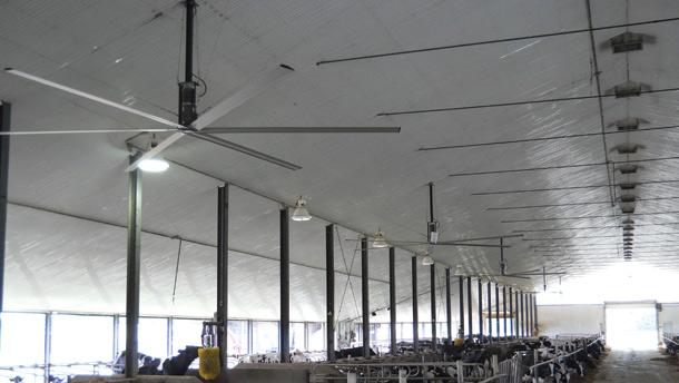 Les ventilateurs géants de Secco, qui mesurent 24 pi de diamètre, remplacent quatre ventilateurs muraux. Ils sont très silencieux et coûtent moins cher d'électricité que ceux qui sont traditionnels.