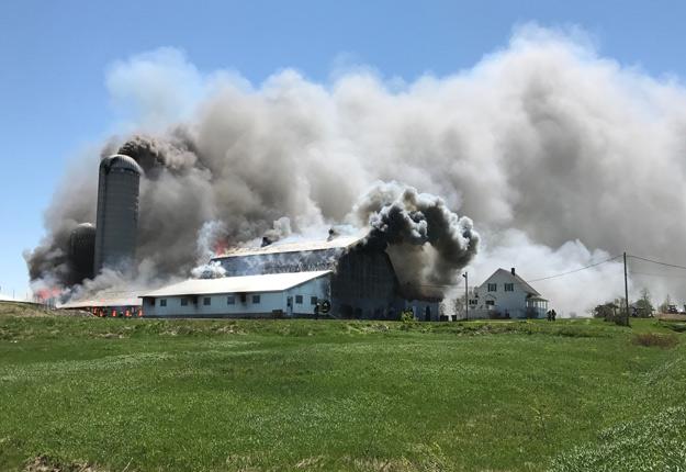 La Ferme Hector Claveau a perdu 150 bovins laitiers de race Holstein et Jersey dans l'incendie. Crédit photo : Daniel Jean
