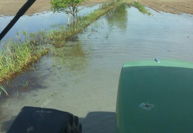 Une superficie importante des champs de la Ferme Lachapelle-Trépanier est toujours recouverte d'eau. « On est rendus à prier », a affirmé Joanie Lachapelle-Trépanier. Crédit Photo : Martin Ménard/TCN