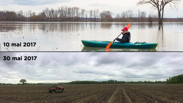 L'eau s'est retirée à la ferme des Leduc à Bécancour, mais c'est toujours impossible de semer : le sol est encore trop humide. Crédit Photo : Martin Ménard/TCN