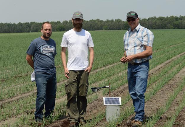 Yvon Van Winden (à droite) a réduit de 40 % l'utilisation de fongicides dans ses champs d'oignons de Napierville grâce aux capteurs de spores d'Hervé Van Der Heyden, directeur scientifique de Phytodata (à gauche), et de son agronome Carl Dion Laplante. Crédit photo : Myriam Laplante El Haïli/TCN