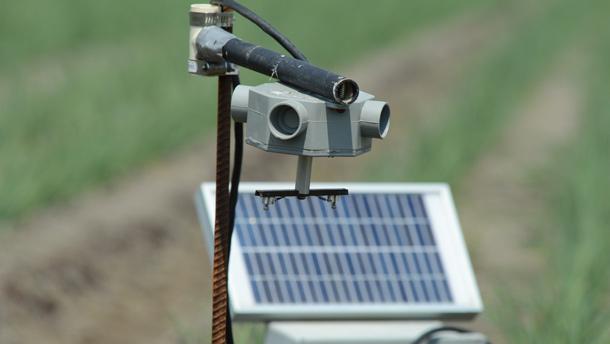L'énergie solaire alimente le petit moteur contenu dans la boîte grise, qui fait tourner la barre noire sous-jacente à 2 400 tours par minute. La vitesse fait descendre deux bâtonnets de la barre noire, où les spores viendront se « coller ». Crédit photo : Myriam Laplante El Haïli/TCN