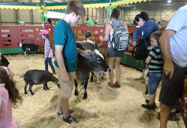 L'Expo agricole de Sorel-Tracy a récemment permis à 450 jeunes écoliers de se familiariser avec les animaux de la ferme. Crédit photo : Gracieuseté de Josée Lalande