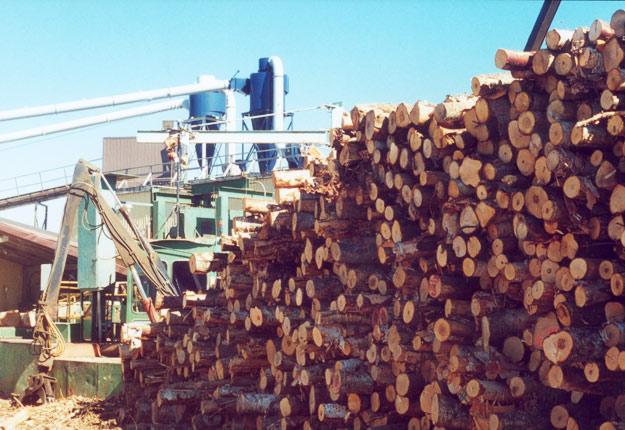 Les taxes à la frontière s'élèvent maintenant à 26,75 % sur le bois de la majorité des scieries canadiennes. Crédit photo : Archives/TCN