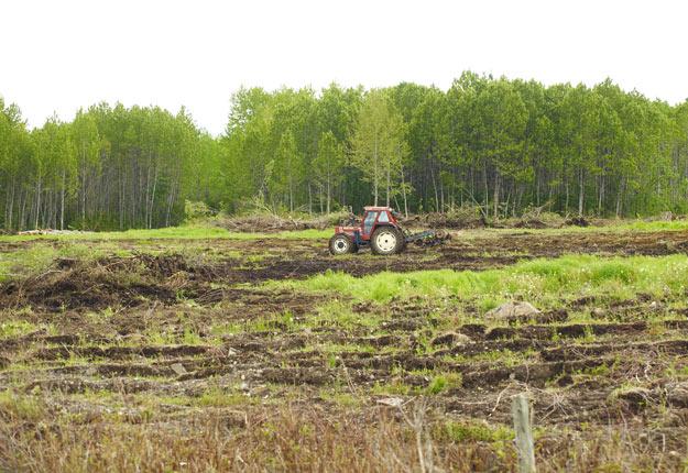 Certains agriculteurs pourraient devoir débourser jusqu'à 40 $ par mètre carré en compensation s'ils veulent défricher un milieu humide pour le cultiver. Crédit : Martin Ménard/Archives TCN