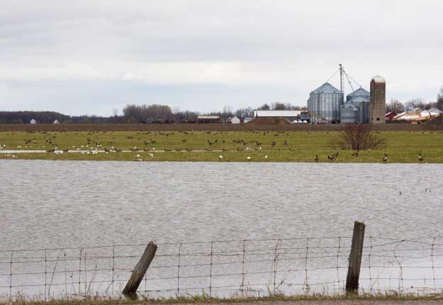 Jean Chevalier croyait pouvoir semer, mais les vannes des barrages en Ontario se sont ouvertes. Il devra passer son tour cette année. Photo : Martin Ménard/TCN