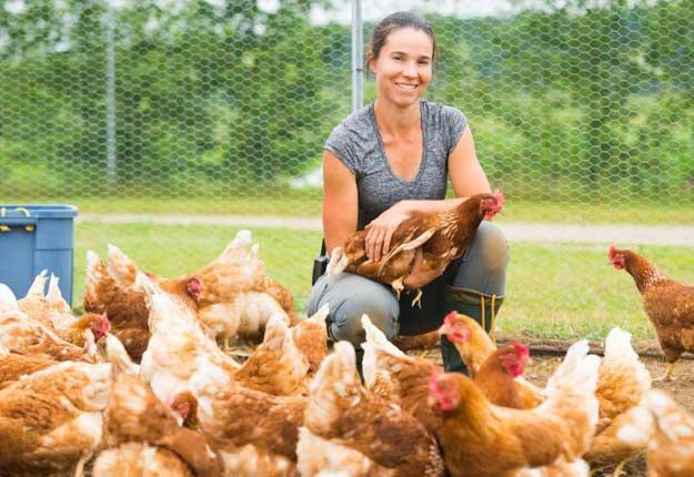 Valérie Campeau produit des légumes biologiques et depuis peu, des œufs. Mais les poules pondent plus que ce qu'elle parvient à vendre. Avis aux intéressés! Photo : Martin Ménard/TCN