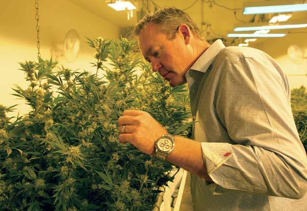 L'ancien professeur de biologie Tim Cullen, de la Colorado Harvest Company, dans l'un de ses sites de production de marijuana. Photo: Ryan Davis
