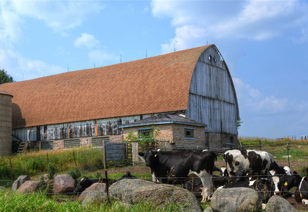 Un groupe de producteurs du Wisconsin a défendu la gestion de l'offre canadienne. Crédit photo : William Garrett