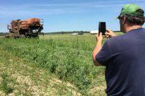 L'agriculteur Denis Champagne prend quelques instants pour immortaliser sa récolte de pois qui, sans battre des records, le satisfait compte tenu des conditions météo. Photo : Martin Ménard/TCN