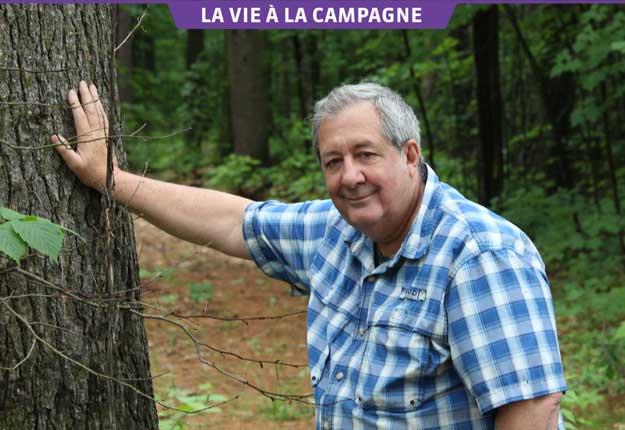 Philippe Mollé a trouvé une vingtaine de variétés de champignons dans son boisé, dont la morille et la chanterelle. Photo : Thierry Larivière/TCN