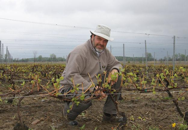 Le président de l'Association des vignerons du Québec et propriétaire du Domaine St-Jacques, Yvan Quirion. Crédit photo : Archives TCN