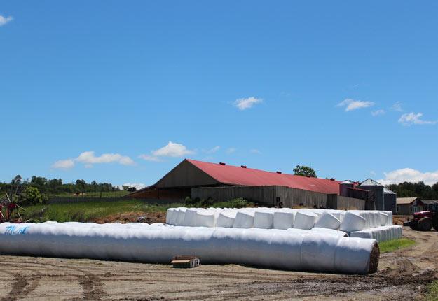 Le projet, mené dans la municipalité de Tingwick, visait à expérimenter un nouveau système de collecte des plastiques utilisés à la ferme.