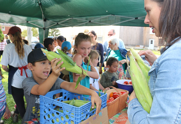 « C'est 75 sous pour un épi », disaient fièrement les jeunes qui ont organisé un petit marché lors de leur dernière journée de camp de jour à la Ferme Quinn. Crédit photo : Josianne Desjardins