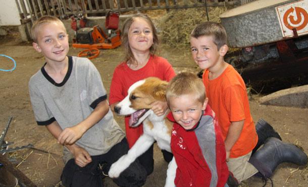 Vincent, 12 ans, Rose-Émilie, 8 ans, William, 5 ans, et Marc-Antoine, 3 ans, adorent la vie à la ferme. Crédit photo : Julie Mercier/TCN