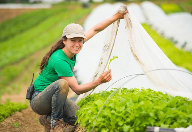Investir pour mieux produire, voilà l'une des clés du succès. Véronique Bouchard, copropriétaire de la Ferme aux petits oignons, a notamment investi dans les tunnels-chenilles et les serres. Crédit photo : Martin Ménard/TCN