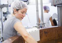 Le manque de main-d'œuvre en région fait mal aux fromageries artisanales et la solution passe souvent par la technologie. Crédit photo : MarieMichèleTrudeau/Archives TCN