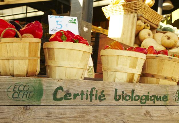 Au Canada, les ventes annuelles au détail de produits certifiés biologiques atteignent environ 4,7 G$. Crédit photo : Archives/TCN