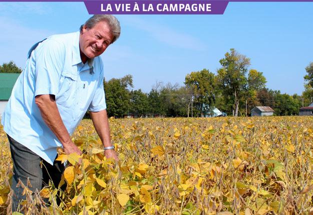 Pierre Bouchard produit du soya, du maïs, de l'orge de brasserie, du blé, des pois et des haricots. Crédit photo : Vincent Cauchy/TCN
