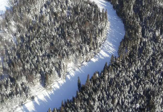 Le Fonds de solidarité FTQ, par le biais de sa société Gestion Solifor inc., vient de mettre la main sur 25 000 hectares de cette forêt du Maine. Crédit photo : Gestion Solifor inc.